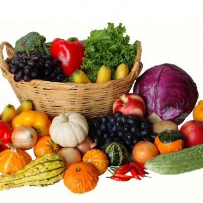 气相色谱仪(GC-NPD)检测蔬菜中有机磷农药残留量