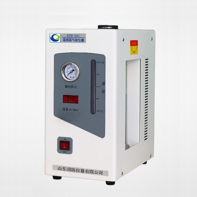 RYH-300/500高纯氢气发生器