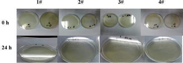 医用口罩中微生物指标检测方法的探讨